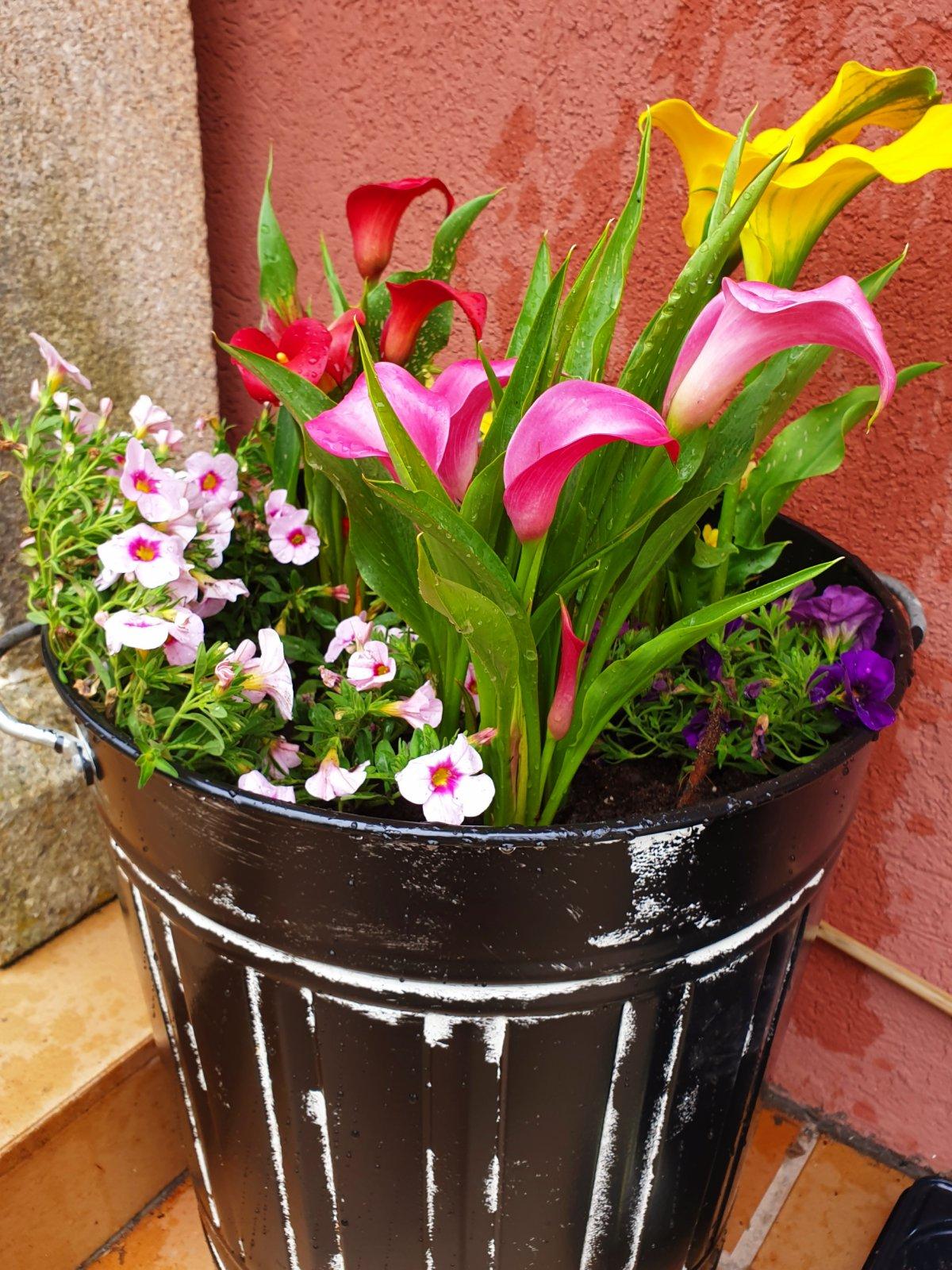 Flores-Decoracion-CasaOMillon