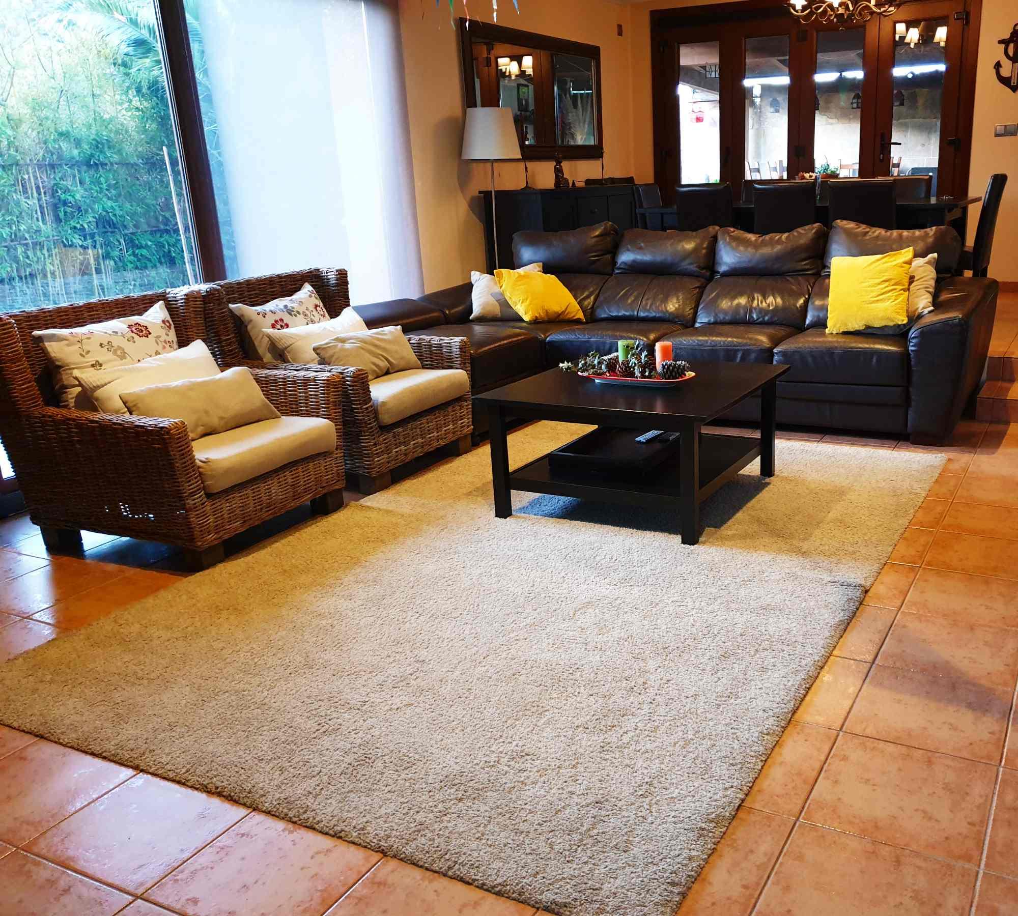 salon-alfombra-mesa-sofa-casaomillon