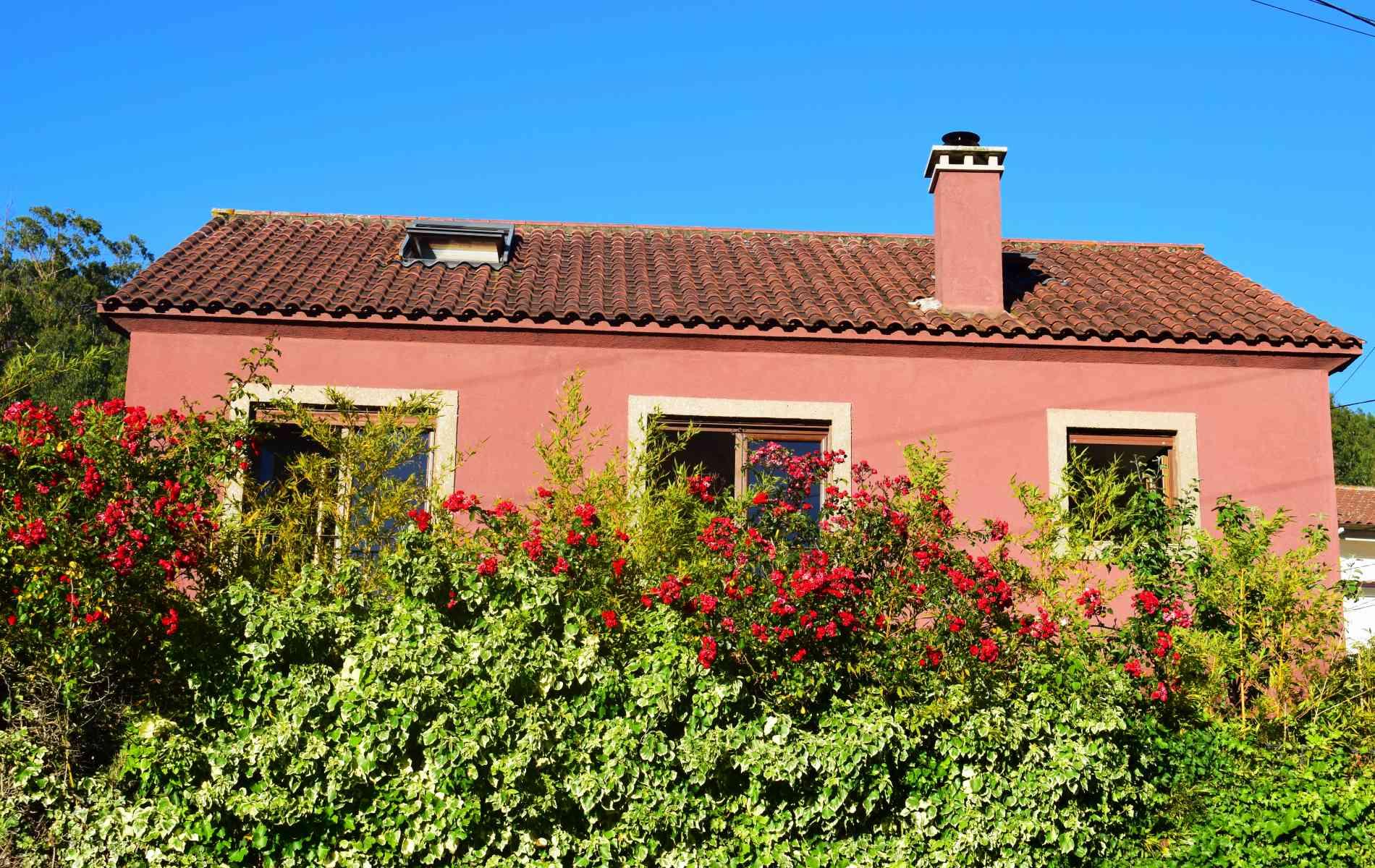 casa-jardin-casaomillon