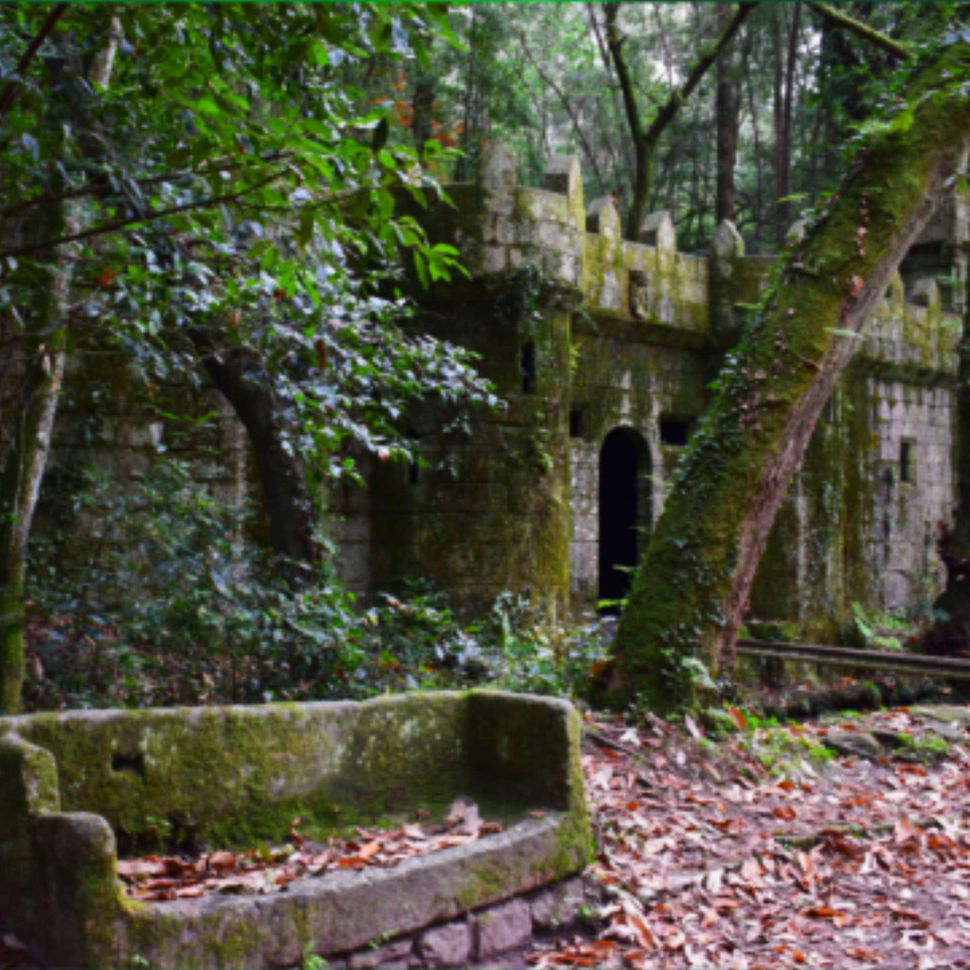 bosque-castillo-aldan
