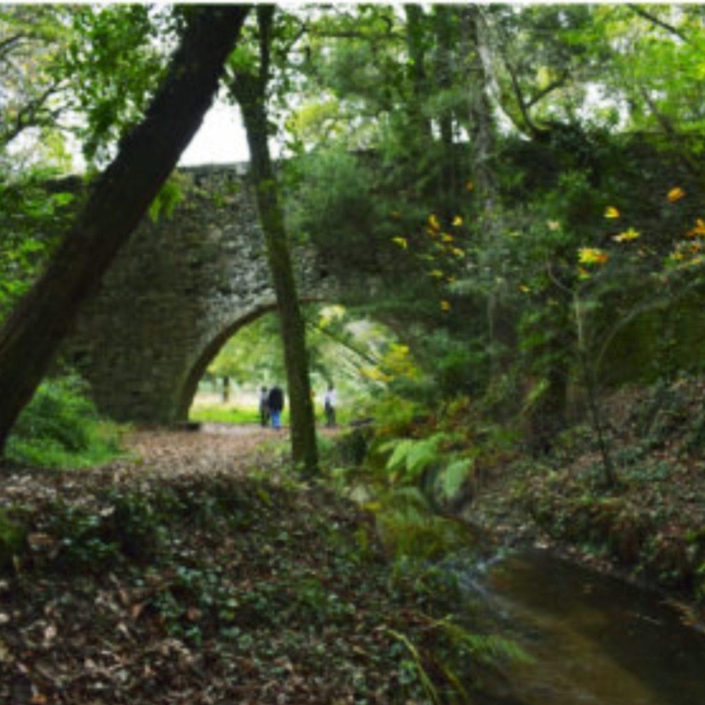 acueducto-bosqueencantado-aldan