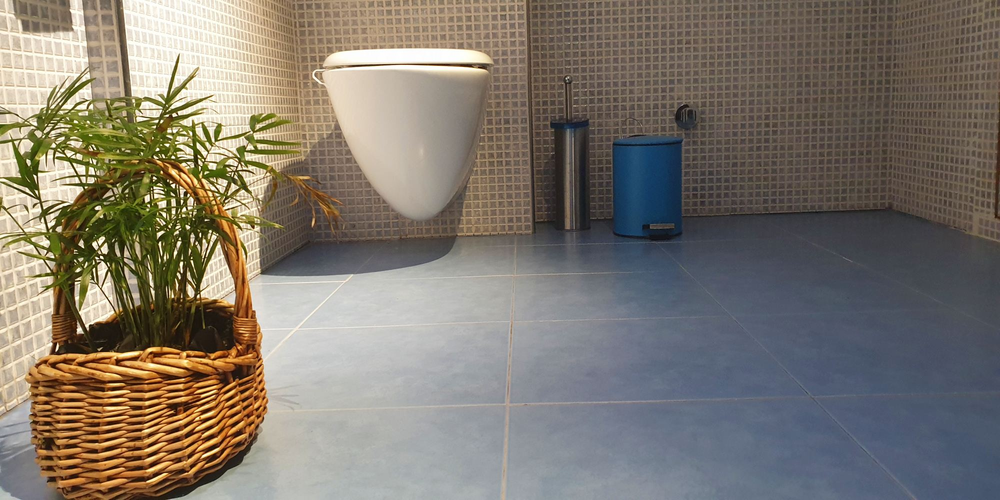maceta-baño-wc-casaomillon