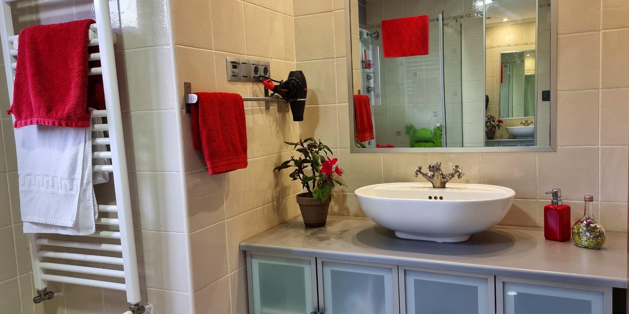 lavabo-baño-casaomillon